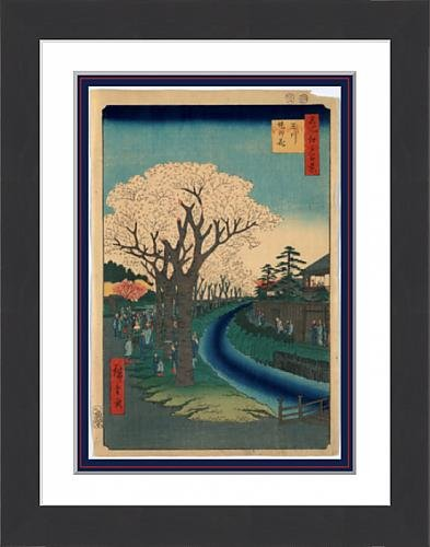 framed-print-of-tamagawa-zutsumi-no-hana-blossoms-on-the-tama-river-embankment-anda