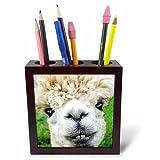 3dRose ph_237102_1 - Soporte para bolígrafos de azulejos (5 pulgadas, Alpaca/Lama/Sudamérica), color blanco