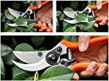 SHEAR JOY Secateurs, Heavy Duty Pro Bypass Pruning Shears And Secateurs, Upto 25mm Cutting Capacity, Light And Comfortable Frame With Safety Lock, Razor Sharp Blades For Cutting Precision With These Strong Garden Pruners