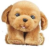 Little Live Pets - Sleepy Puppy, perro interactivo (Famosa 700013210)
