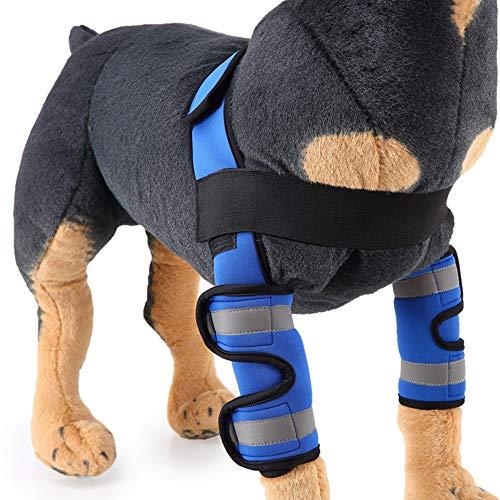 BVAGSS Einstellbar Bandage Knieschützer Atem Kniebandage Hund Leggings Joint Wrap Unterstützung für Das Hinterbein/Vorderbein Ihres Hundes XH005 (L, Blue)
