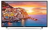 MEDION Life P17118 MD 31159 108 cm (43 Zoll Full HD) Fernseher (LCD-TV mit LED-Backlight, Triple Tuner, DVB-T2 HD, HDMI, CI+, USB, Mediaplayer, inkl. Wandhalterung) schwarz