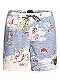 Quiksilver Variable 17' - Swim Shorts for Men - Schwimmshorts - Männer