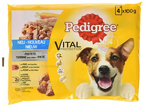 Pedigree Cani Cibo Umido mangime Vital Protection Adult/Pastete con Bovina/Pollo e Carote, 13er Pack (13X 4X 100G)