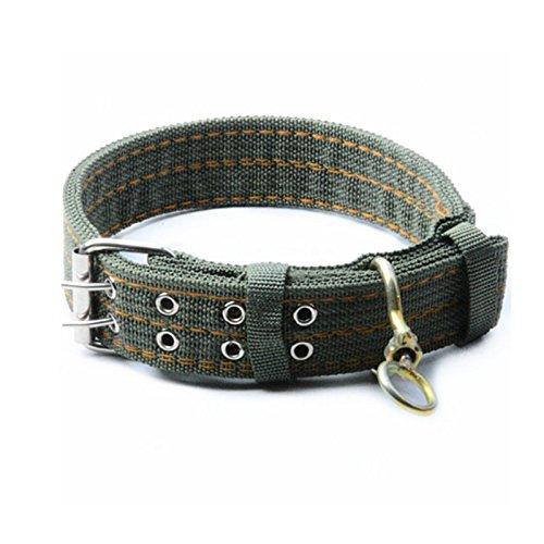 BADALink Espesar Suave y Cómodo Pet Collars Correa Ajustable para Perro Mascota collares para mascotas, Verde del Ejército