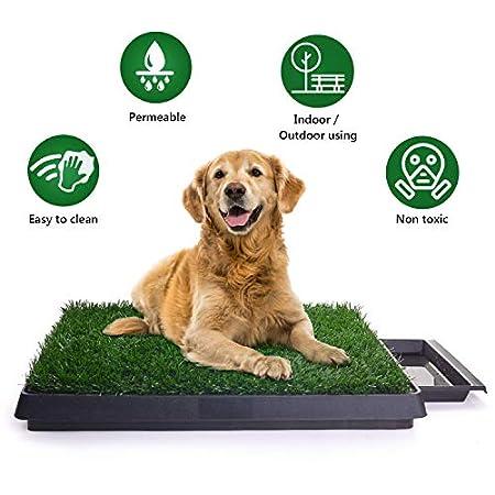 Hundetoilette, Hundeklo Toilette, Trainingsunterlage für Kleine Hunde Grosse Hunde ältere Hunde Tier WC Indoor…