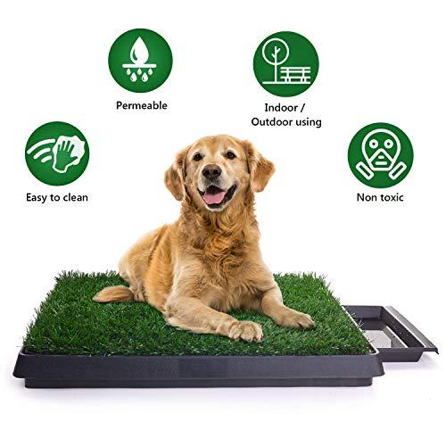Bogeer Hundetoilette, Hundeklo Toilette,Trainingsunterlage für Kleine Hunde Grosse Hunde ältere Hunde Tier WC Indoor Welpentoilette Trainingsunterlage Gras mit Kunstrasen 63 x 50 cm