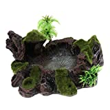 Sharplace Futterschale Futternapf Wassernapf Reptilien Terrarium Dekoration