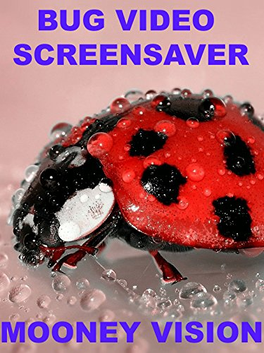 Bug Video Screensaver Set To Music [OV] (Bugs Wallpaper)