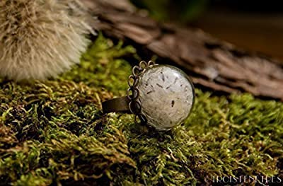 Bague en verre - Pétales de Pissenlit dits Dent de lion - Fleurs naturelles séchées - 20mm - Cadeau de Noël - Idee cadeau