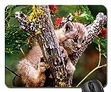 Yanteng Kitty in The Tree Tapis de Souris, Tapis de Souris (Tapis de Souris Chats)