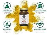 Ashwagandha Kapseln Vegan I Chill & Relax - Entspannung Bei Stress I Mit Theanin, Magnesium Malat, Vitamin B I 60 Stück