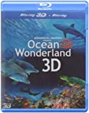 Ocean Wonderland (3D)