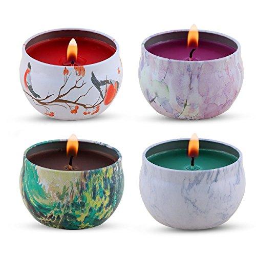 KitchenGynti Regalo de velas aromaticas - lavanda, rosa, árbol de té y hierbabuena, la cera de la soja del 100{36daa9dd878e2515207e40a174fa078fbb60bba187b18305e70dca0b46c43d39} aliviar el estrés y aromaterapia, candela del regalo de Navidad - Paquete de 4