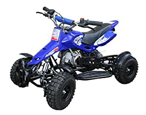 Mini Moto Quad Bike 49cc Cub (Blue)