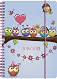 Brunnen 1072985039 Schülerkalender