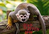 Welt der Affen (Wandkalender 2019 DIN A2 quer): Faszinierende Zusammenstellung der verschiedenen Affenarten unseres Planeten (Monatskalender, 14 Seiten) (CALVENDO Tiere)