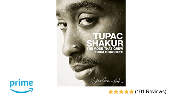 tupac a rose that grew from concrete book