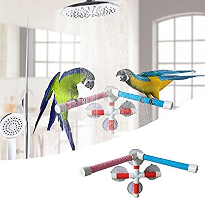 Parrot Bath Stand Perch Bird Shower Standing Bar for Parrot Macaw African Greys Budgies Cockatoo Parakeet Bird Bath… 2