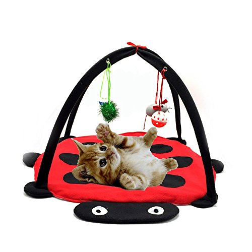 *Tofern Katzenbett Katzenzelt Katzenkissen Tierbett Katzenspielzeug faltbar waschbar, Rot*