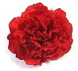 Flower 1078210782-semilla Gazon Littoral Fort, 5kg, NO Applique, 25x 14.5x 54cm