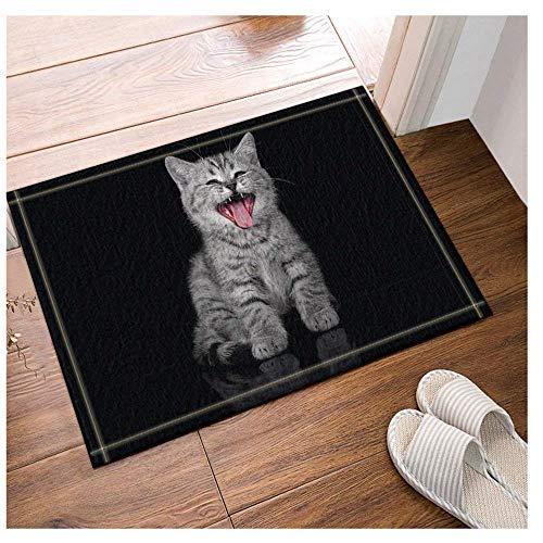 FEIYANG Die schöne Katze, die glücklich lacht Badteppiche Rutschfeste Fußmatte Boden Eingänge Outdoor Indoor Haustürmatte Kinder Badmatte 60X40CM Bad-Accessoires