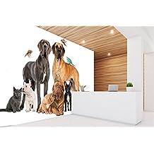 Fotomural Vinilo Pared Perros razas | Fotomural paredes | Mural | Vinilo Decorativo | Varias Medidas