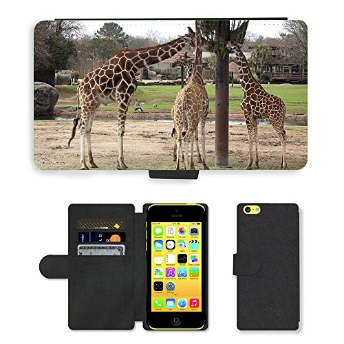 Just Mobile pour Hot Style Téléphone portable étui portefeuille en cuir PU avec fente pour carte//m00139373Girafes repas Biberon Zoo faune//Apple iPhone 5C