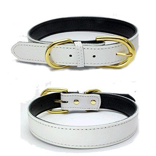 Mcdobexy Klassische weiche gepolsterte Leder Hundehalsband für Katzen Welpen kleine mittelgroße Hunde