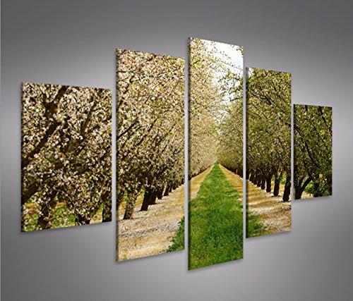 quadro-moderno-fioritura-primavera-alberi-mandorli-mfp-stampa-su-tela-quadro-x-poltrone-salotto-cuci
