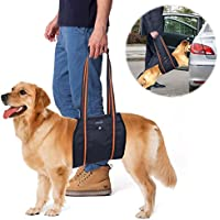 Dog Lift Harness, PETBABA Mobility Rehabilitation Sling Support Harness with Handle for Dog Aid Injury and Arthritis XL