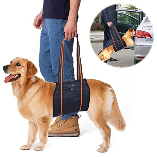dog-lift-harness-petbaba-mobility-rehabilitation-sling-support-harness-with-handle-for-dog-aid-injur