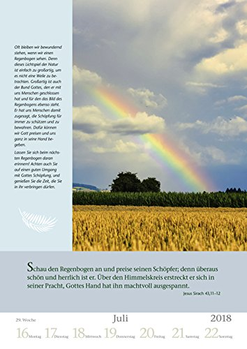 Mit Gott durch das Jahr - Kalender 2018 - Harenberg-Verlag - Wochenkalendarium - 54 Blatt mit Zitaten- Wandkalender - 25 cm x 35,5 cm - 3