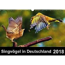 Singvögel in Deutschland (Wandkalender 2018 DIN A3 quer): Ein Vogelkalender mit herrlichen Impressionen unserer Singvögel (Monatskalender, 14 Seiten ) ... Tiere) [Kalender] [Apr 01, 2017] Klapp, Lutz