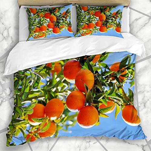 Soefipok Bettbezug-Sets Zitronenblaue Säure Reife Orangen Am Zweig Essen Trinken Ernte Obstgarten Natur Grün Landwirtschaft Helles Knospendesign Mikrofaserbettwäsche mit 2 Kissenbezügen