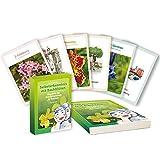 Kartenset: Selbsterkenntnis mit Bachblüten: Wandeln Sie Ihre Schwächen in Stärken