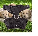 Haustier Harness Hund Netz Hundegeschirr Welpengeschirr Weste Hundehalsband Verstellbare Brustgeschirr für Hunde Mehrfabig