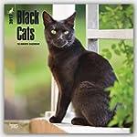 Black Cats 2017 Calendar