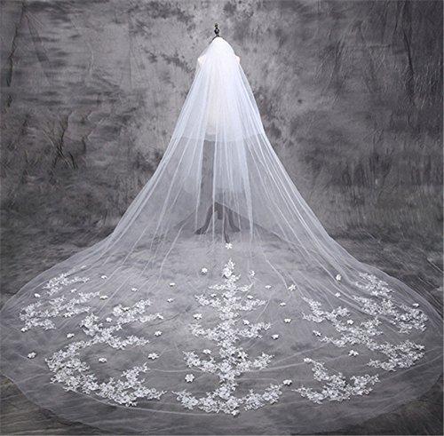 JASNO Braut Hochzeit Schleier Trailing Spitze Blütenblatt Applique Long Princess Schleier 5M White Double Layer mit Haar Kamm (Rouge Schleier)