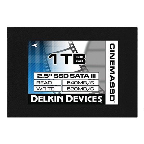 Delkin 1TB Cinema 2,5SATA III Solid State Drive-Schwarz