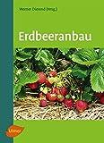 Erdbeeranbau - Prof. Dr. Werner Dierend