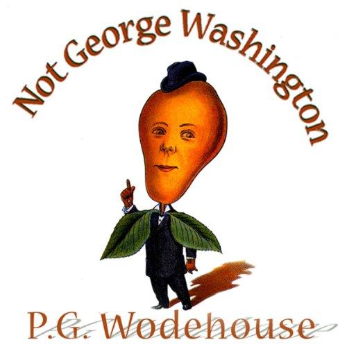 Not George Washington  Audiolibri