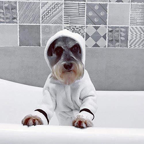 cuckoo-X - Albornoz de Pijama Grueso, Secado rápido y superabsorbente, para Perros y Gatos