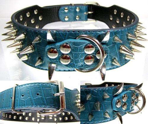 Power Nietenhalsband mit silber Nieten - Grün 5cm breit - 54cm lang - Top Edel Spikes Hundehalsband Lange Spike Hundehalsband
