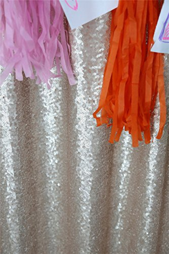 TRLYC 60″*84″ Champagne Shimmer 5Ft*7Ft Sequin Fabric Photography Backdrop For Wedding On Sale