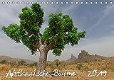 Afrikanische Bäume (Tischkalender 2019 DIN A5 quer): Faszinierende Aufnahmen von Solitairbäumen im südlichen Afrika (Monatskalender, 14 Seiten ) (CALVENDO Natur)