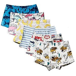 Anntry Ropa Interior para niños pequeños de algodón Suave Calzoncillos de Bóxer Surtidos para niños pequeños Edad 2-7 años (Paquete de 6)