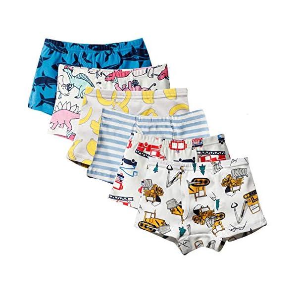 51JxbLsZnfL. SS600  - Anntry Ropa Interior para niños pequeños de algodón Suave Calzoncillos de Bóxer Surtidos para niños pequeños Edad 2-7 años (Paquete de 6)