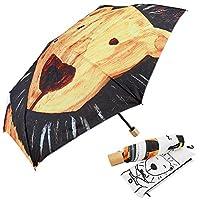 Carry Folding Umbrella Painted Lion