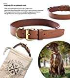 Jack & Russell Premium Leder Hunde Halsband Jacky - Original echtes Leder Halsband braun Jacky (XL)